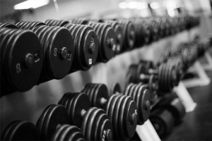 Free weights lined up