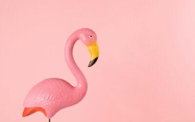 Do As The Flamingos Do